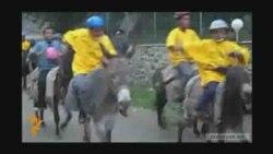 Qarabağda eşşək yarışı
