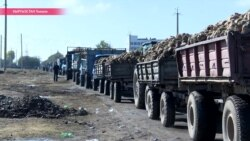 Как разорить киргизского свекольщика