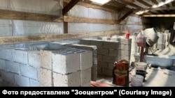 """Фото строительных работ, предоставлено """"Зооцентром"""""""