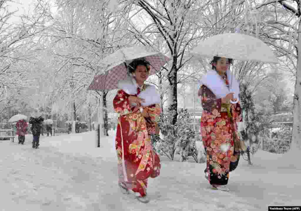 Japan - Snijeg u Tokiju, 14. januar 2013. Foto: AFP / Yoshikazu Tsuno