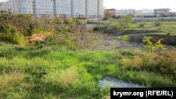Забудова фісташкового гаю, Севастополь