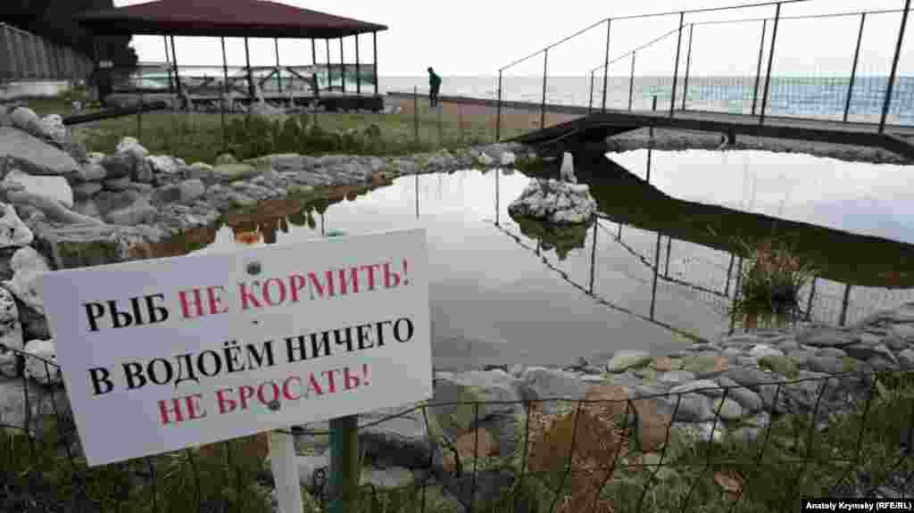 Рибок у цій водоймі насправді немає