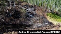 Пожар в лесах Башкортостана