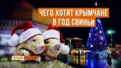Мира и туристов: новогодние мечты крымчан (видео)