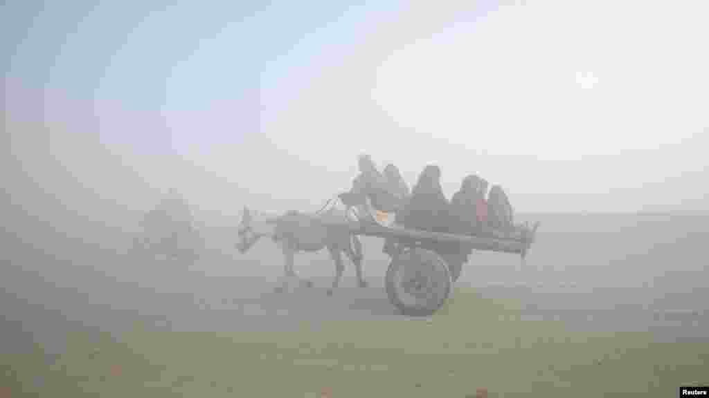 A family travels on a donkey cart amid dense fog on a cold morning in Lahore, Pakistan, on January 18. (REUTERS/Mohsin Raza)