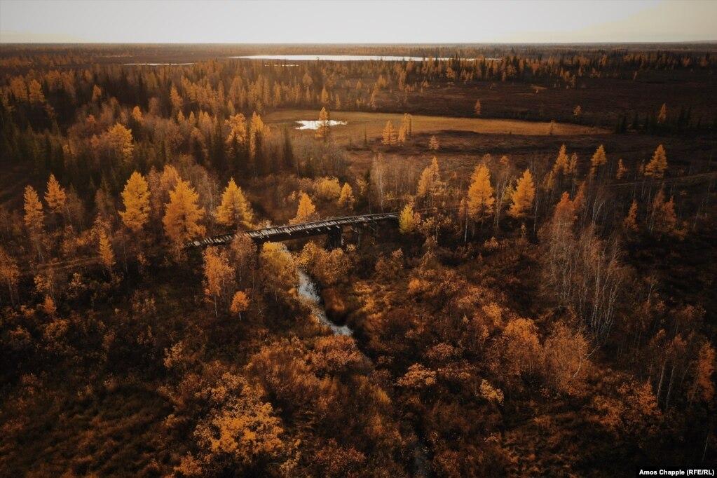 Остатки железной дороги, известной как & laquo; Мертвая дорога & raquo ;, в тайге между Салехард и Надым в России;  23 сентября.