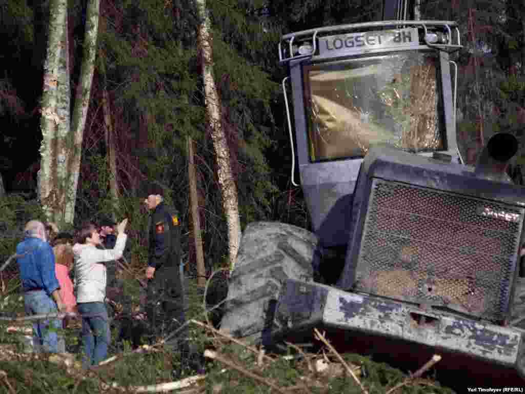 Экологам удалось приостановить радоты по вырубке леса