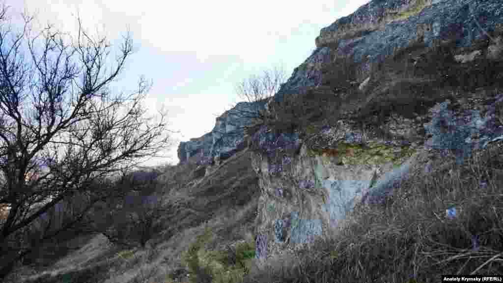 На скальные осыпях давно прижились дикие абрикосы и кустарники