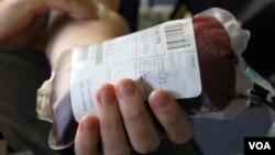 Пакет с донорской кровью
