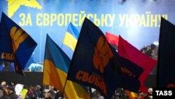 Украинанын ЕБга кошулушун талап кылган митинг, Киев, 24-ноябрь, 2013.