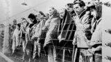 Уцелевшие узники Освенцима, 1945 год