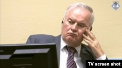 Bosnian Serb military leader Ratko Mladic (file photo)