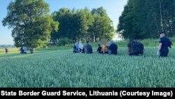 شماری از مهاجران که میخواهند از بلاروس وارد لیتوانیا شوند