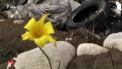 Памятники древности и мусорная свалка