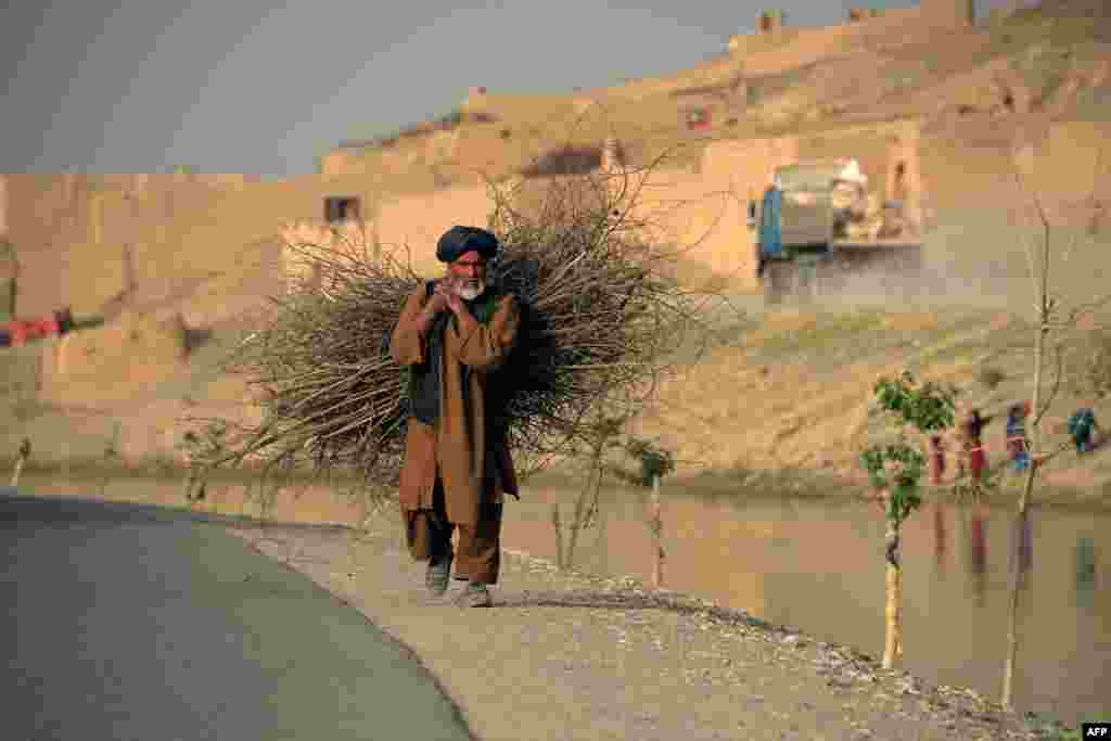 An Afghan man carries firewood along a road in Kandahar. (AFP/Jawed Tanveer)