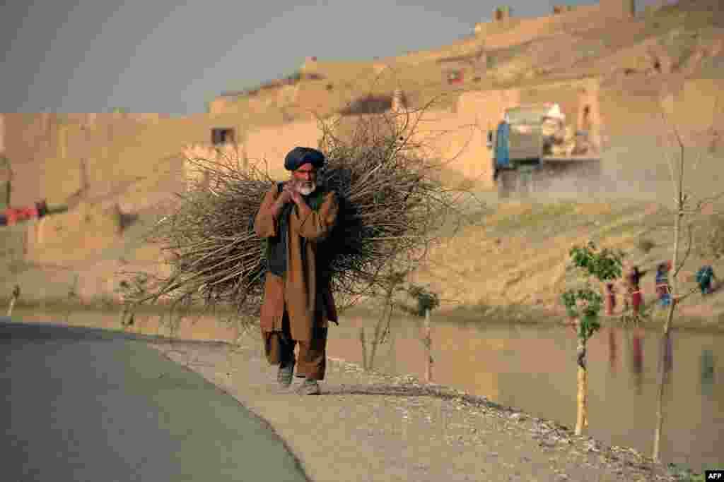 An Afghan man carries firewood along a road in Kandahar. (AFP/Jawed Tanveer)