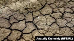 Последствия засухи