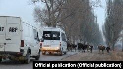 Кыргызстандагы машине жолдордун бири.