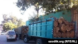 Uzbekistan - wood for sell in bazaar