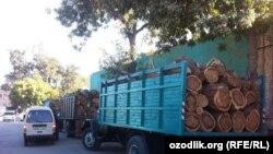 Uzbekistan - wood for sell in bazaar