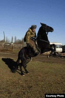 Яганов разводит лошадей уже 27 лет