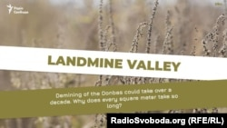 "Graphic from Ukrainian Service's ""Landmine Valley"" project"