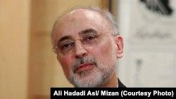Али Акбар Салехи, глава Иранской организации по ядерной энергетике.
