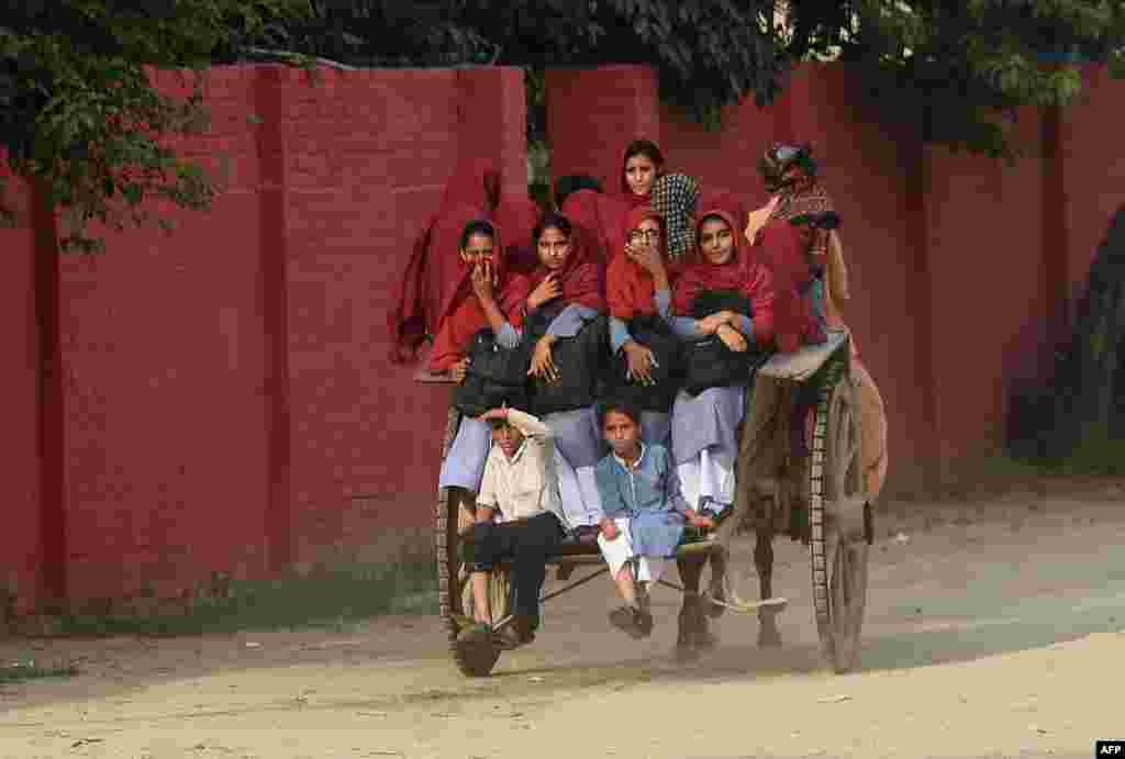 Pakistani students ride a cart through the village of Hussain Khanwala in Punjab Province. (AFP/Arif Ali)