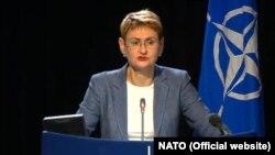 Лунгеску: стосовно Росії Північноатлантичний альянс дотримується двовекторного підходу: потужне стримування і оборона при збереженні серйозного діалогу