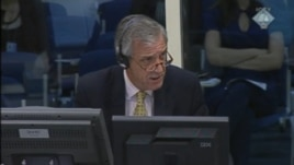 Svjedok Ernaut Van Linden na suđenju Ratku Mladiću, 22. kolovoz 2012.