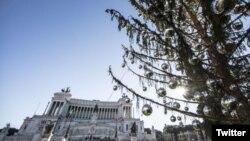 Рим, площадь Венеции, осыпавшаяся ель
