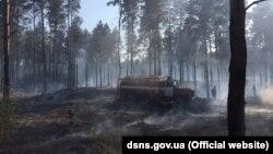 Лісова пожежа в Херсонській області, фото прес-служби ДСНС, 2 серпня 2019 року