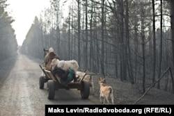 Locuitori din Mahdyn, regiunea ucraineană Zhytomyr, se mută într-un alt sat împreună cu animalelor lor, pe 18 aprilie, după ce casele lor au fost distruse de incendii care s-au manifestat timp de săptămâni și au intrat și în zona de excluziune de lângă fosta centrală nucleară de la Cernobîl. (Maks Levin, RFE/RL)