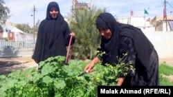 امهات عراقيات يعملن حتى في عيدهن