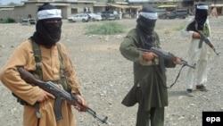 Пәкістандық Талибан тобының мүшелері. (Көрнекі сурет)
