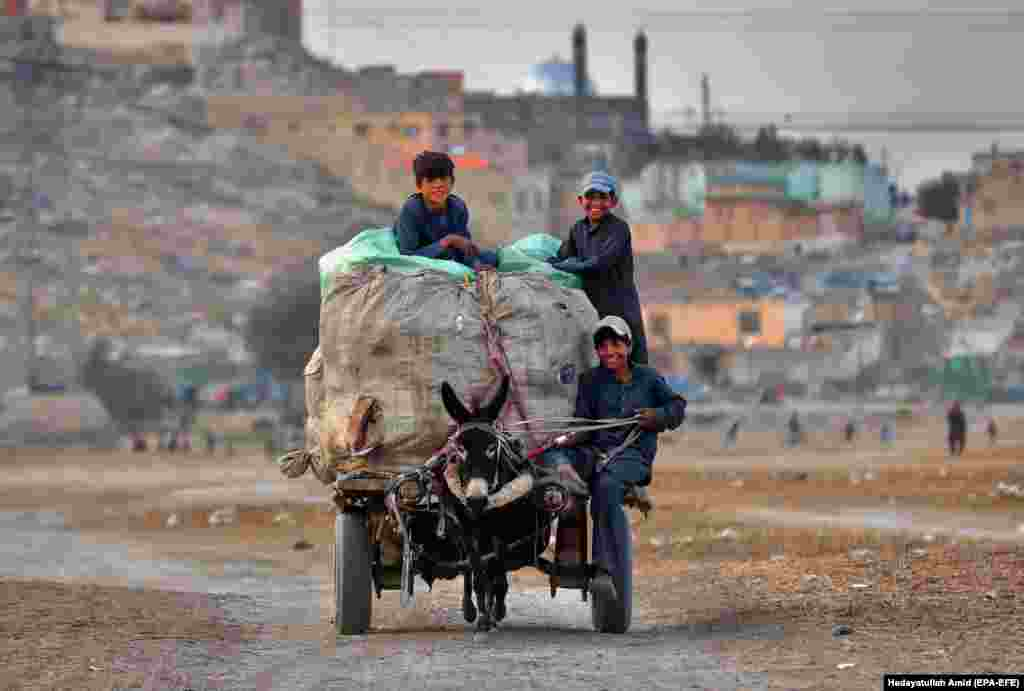 Afghan boys ride on a donkey cart, transporting plastic bottles for recycling on the outskirts of Kabul. (epa-EFE/Heyadatullah Amid)