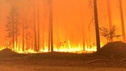 Почему в Якутии горит лес