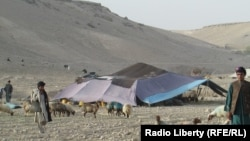 A Kuchi tent in the central Afghan provinc eof Uruzgan.