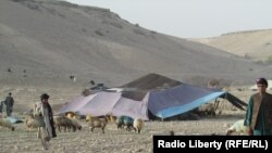 A Kuchi nomad family in southren Afghanistan. (file photo)