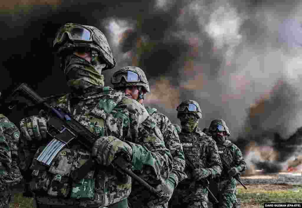 تفنگداران دریایی ارتش مکزیک در خط مقدم نبرد با کارتلها و قاچاقچیان در آن کشور هستند. در تصویر: تفنگداران پس از نابودی ۴.۷ تن کوکایین، ۴۶۸ کیلو ماریجوانا و دهها قرص روانگردان در سپتامبر ۲۰۱۸.