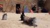 افرادیکه در اثر خشکسالی از ولایت جوزجان بیجا شده اند. June 05 2018