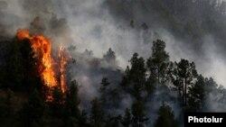 Հրդեհը Վայոց ձորի անտառում, 11-ը օգոստոսի, 2017թ․