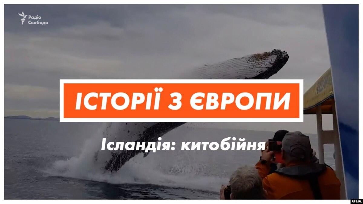 Убийство китов. Почему Исландия ежегодно убивает 161 животное? (видео)