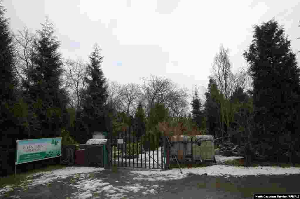 ПрахIера кешнаш гIалин йистехь ду, БохIнице олучу меттехь, цхьана паркана уллохь.