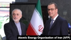 Ali Akbar Salehi (L) shakes hands with Acting Director General of the International Atomic Energy Agency (IAEA) Cornel Feruta during their meeting in Tehran, September 8, 2019