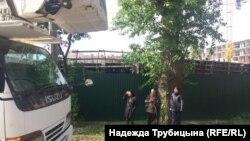 В Тюмени активисты защищают дерево от рубщиков