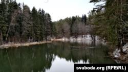 Belarus - Ancient Pyacherski Forest Park in Mahilyou. Mahilyou, 29Dec2019