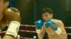 «Тайталас» - про бокс и не только