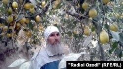 Қадриддин Саидҷонов, лимӯпарвар аз ноҳияи Қумсангири вилояти Хатлтон
