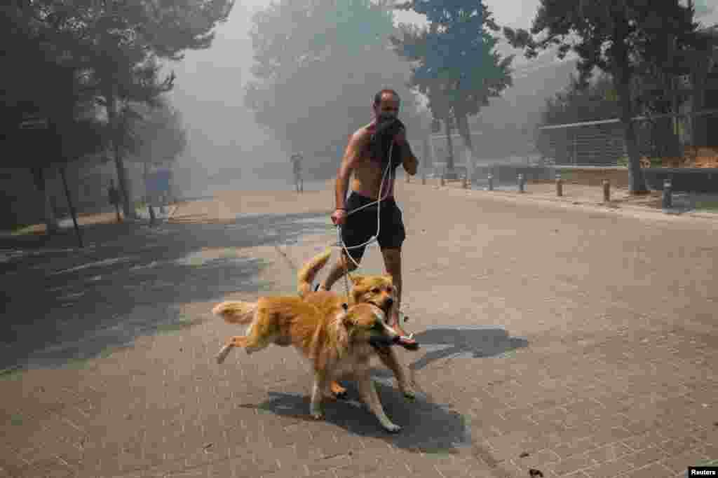 7 серпня у Грецію прибули українські рятувальники, щоб допомогти місцевим пожежникам боротися з масштабними лісовими пожежами.Грецьким вогнеборцям допомагатимуть сотня рятувальників з дев'яти областей України та Києва